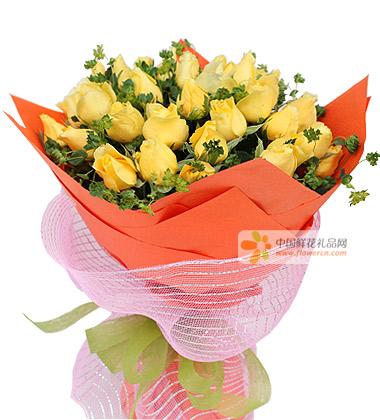 33朵黄玫瑰图片