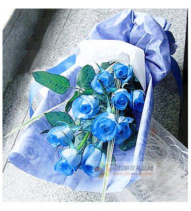 蓝色妖姬的花语是什么?蓝色妖姬的寓意,蓝色