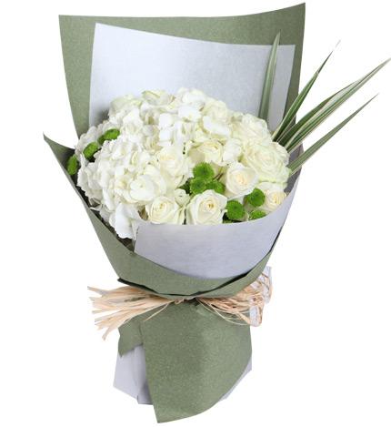 风景花朵绿玫瑰花